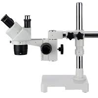 Microscopes And Viewers